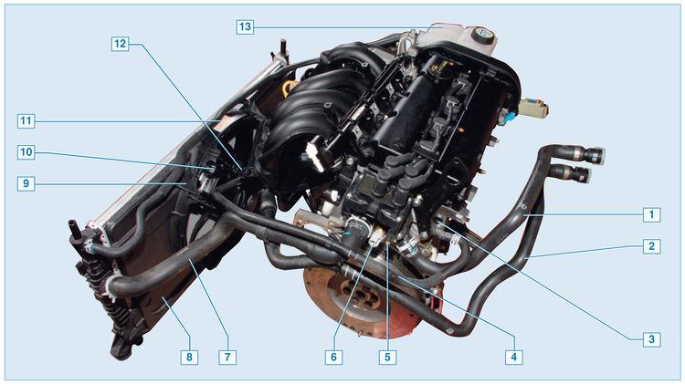 схема охлаждения форд фокус 1