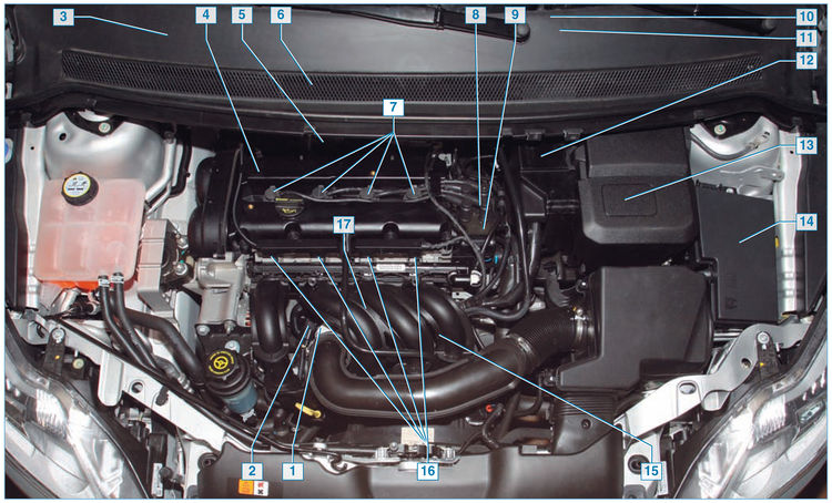 Ремонт Ford Focus II-89.jpg